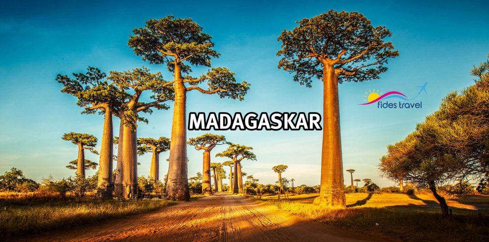 Kayıp Cennet Madagaskar